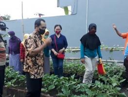Koordinator PPL Kapanewon Depok Kunjungi KWT Tuwuh Makmur Santren